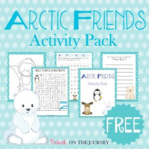 Arctic Friends Activity Pack