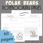 Free Baseball Notebooking Pages