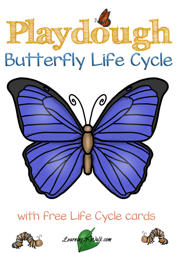 Playdough-Butterfly-Life-Cycle