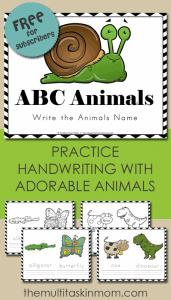 ABC Animals Write Their Name