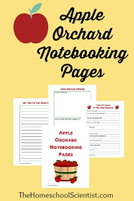 Field trips to the apple orchard can be made into an amazing chance to practice some of those writing skills with these free notebookingpages.