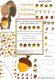 The Best Squirrel Activities for Preschool & KindergartenYou can Download these Adorable Autumn Printables for a fun-filled Squirrel Week.