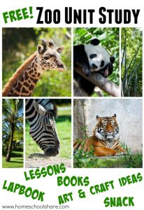 Children love zoo animals making this combo amazing. This study includes crafts, snack ideas, a lapbook, list of storybooks and hours of fun!