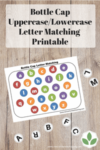 Uppercase / Lowercase Letter Matching Printable