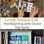 The Prettiest Fall Beginning Letter Sound Clip Cards