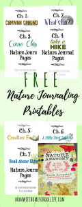 Take a Hike Nature Journaling Pages