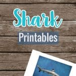Shark Printable Set
