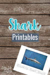 Shark Printable Set