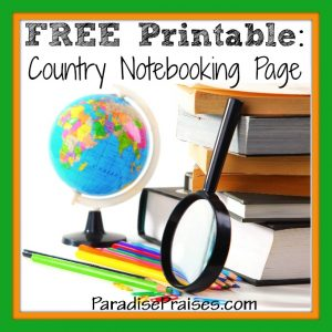 Study a Country Notebooking Page
