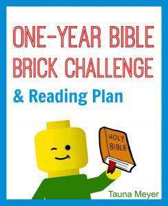 Bible Brick Challenge