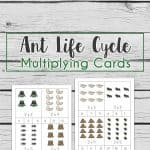 Ant Multiplication Cards