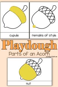 Printable Acorn Playdough Mats