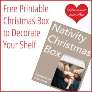 Printable Christmas Box