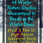 Free Winter Nature Study & Scavenger Hunt