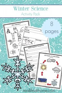 Printable Winter Science Activities