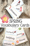 Free Spring Vocabulary Word Cards