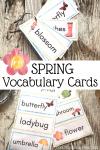 Free Spring Vocabulary Word Cards