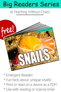 Snail Emergent Reader