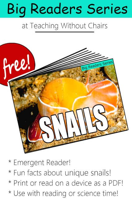 Snail Emergent Reader