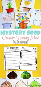 Mystery Seed Writing Activity