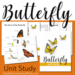 Butterfly Unit Study