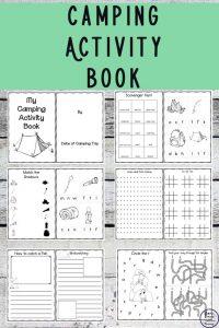 Kid's Camping Activity Book