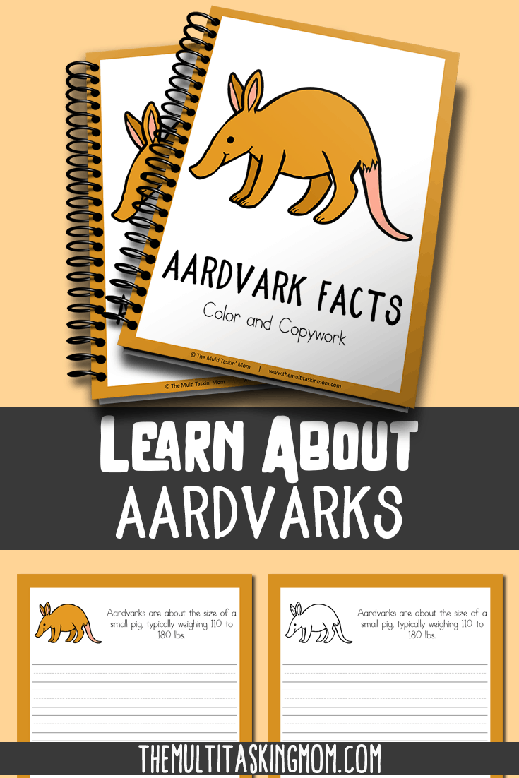 Aardvark Color and Copywork