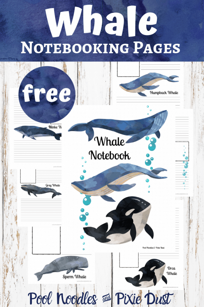 Whale Noteboking Pages Set