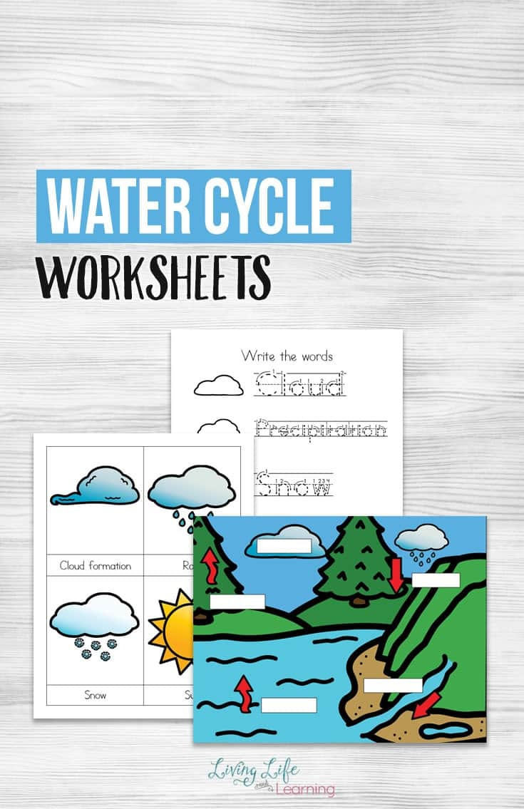 Free Water Cycle Worksheets